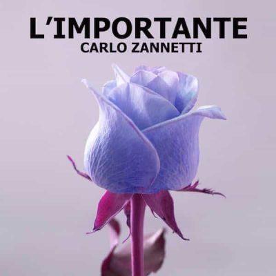 L'Importante Carlo Zannetti